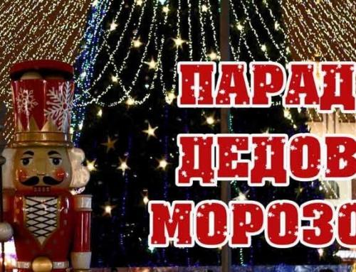 Выставка «Парад Дедов Морозов»